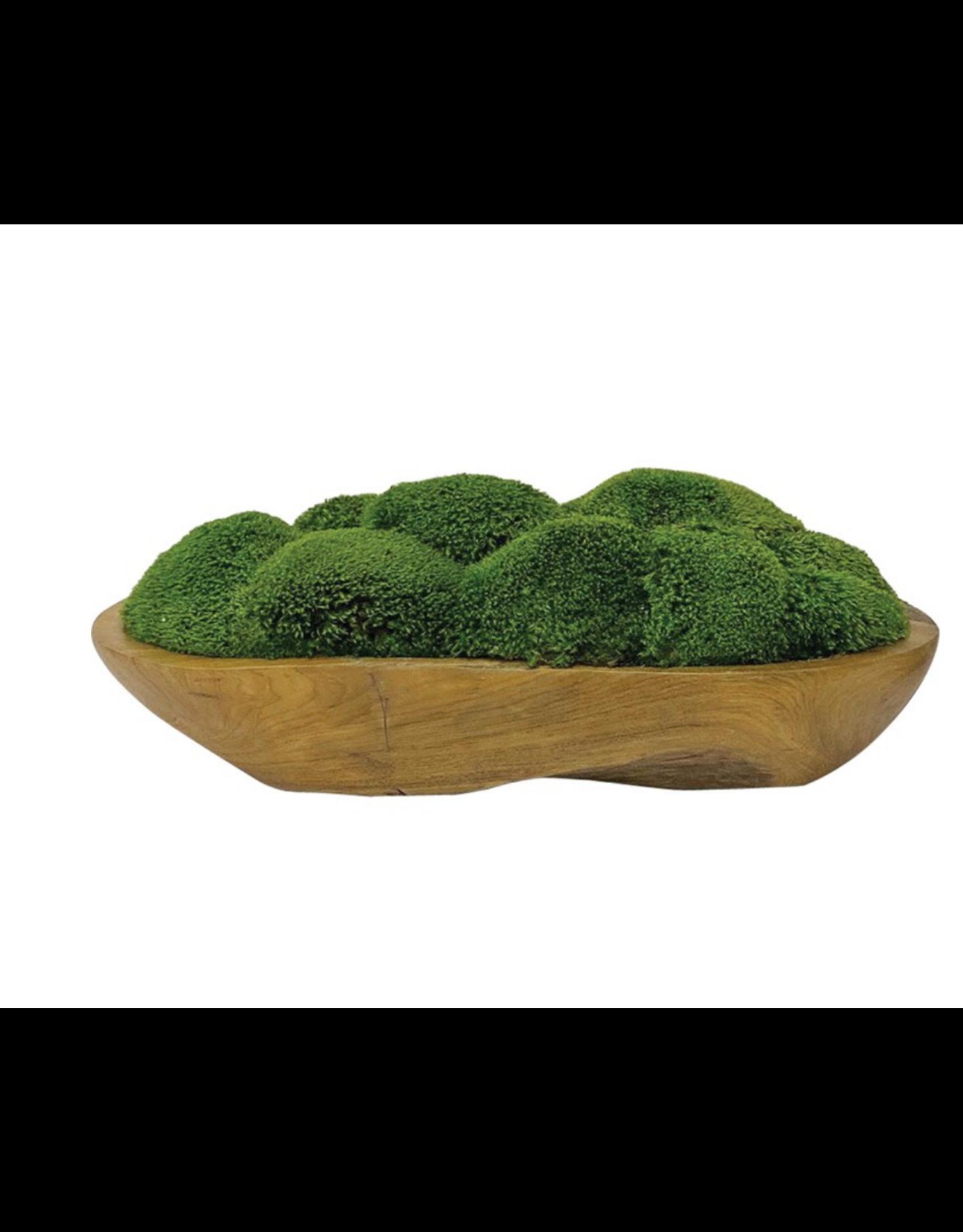 Website Kinsale Moss Centerpiece