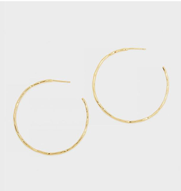 Website Taner Hoops - gold