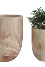 Website Paulownia Wood Pots