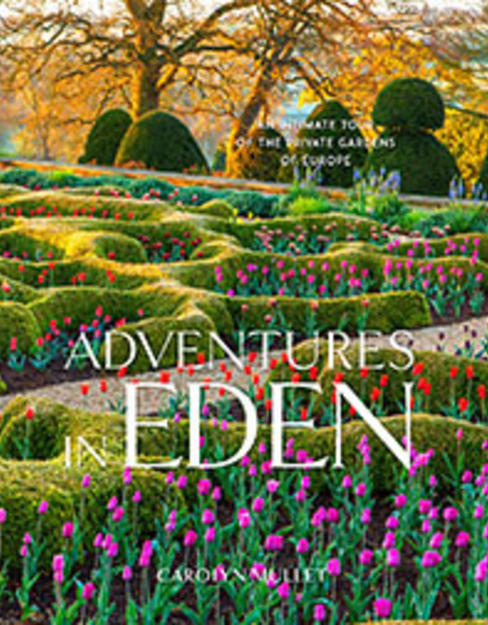 Website Adventures in Eden