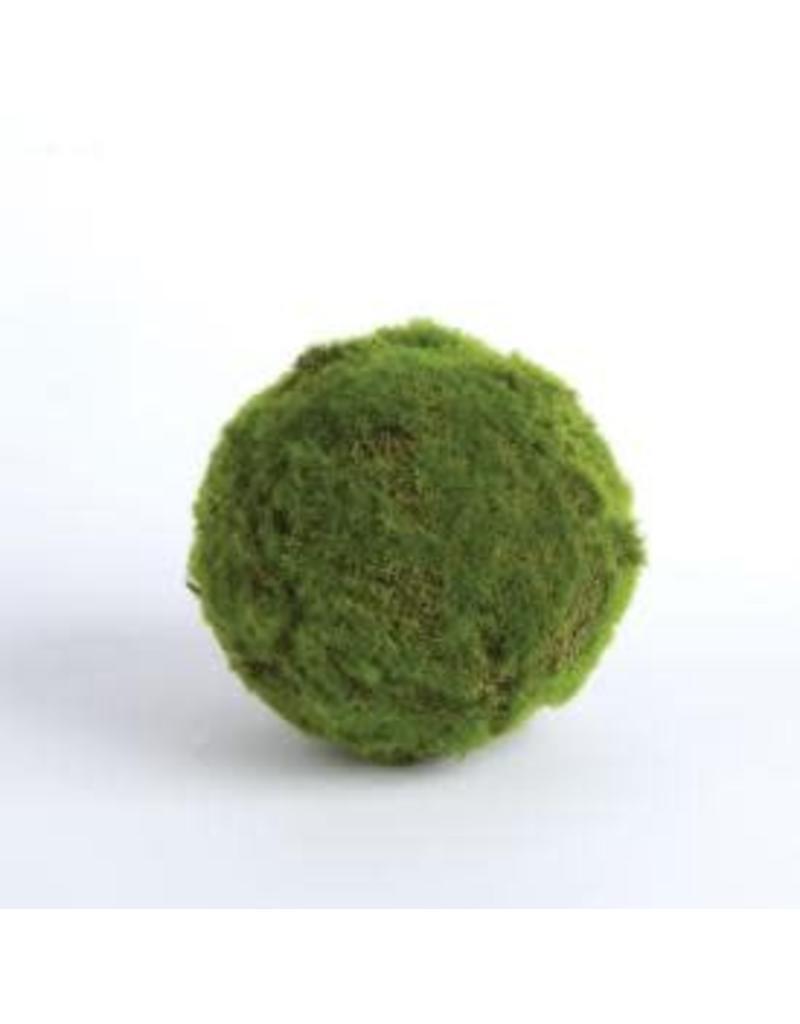 """MOSS BALL 5"""""""