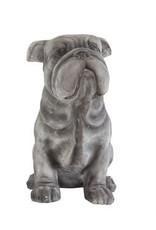 Magnesia Bulldog