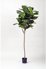 Display 5' Fiddle Fig Leaf Tree