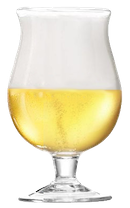 A chalice beer glass filled with a crisp, golden ale.