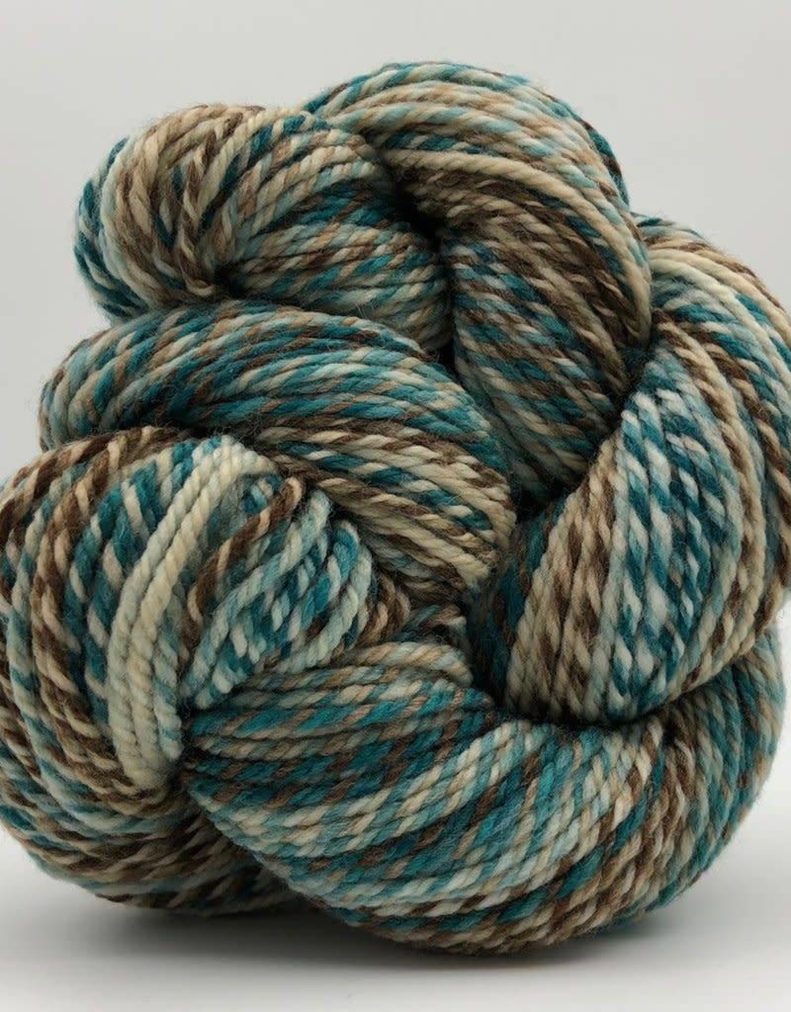 Spincycle Yarns Dream State Robin's Egg