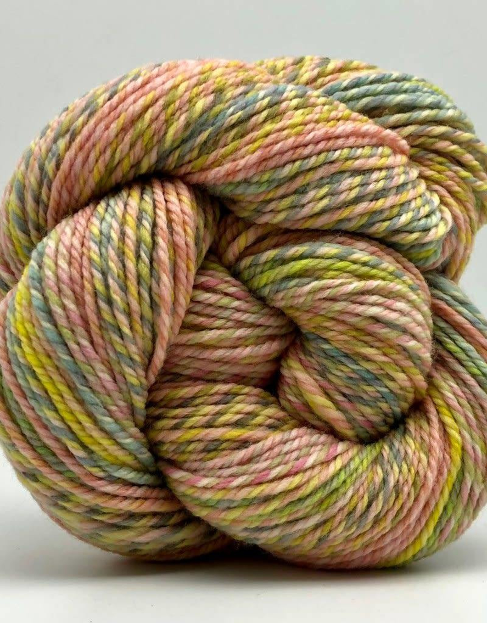 Spincycle Yarns Dream State Verba Volant