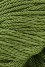 Radiant Cotton Sage 814