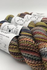 Spincycle Yarns Dyed in the Wool Ghost Ranch