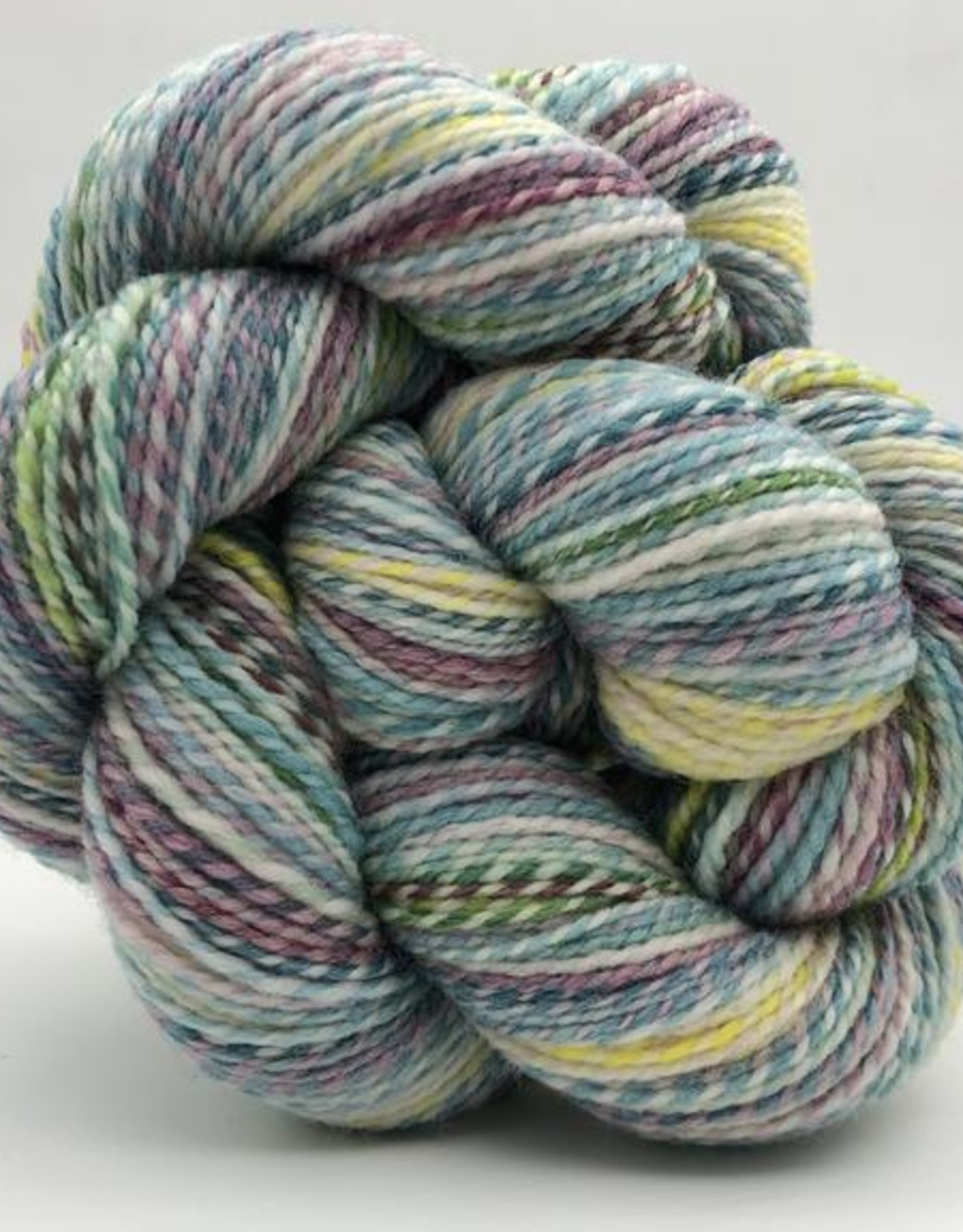 Spincycle Yarns Dyed in the Wool The Castle