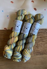 Spincycle Yarns Dyed in the Wool Close Call