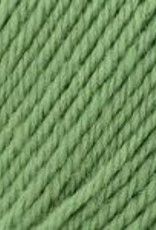 Universal Yarn Deluxe Worsted Superwash 710 Greenery