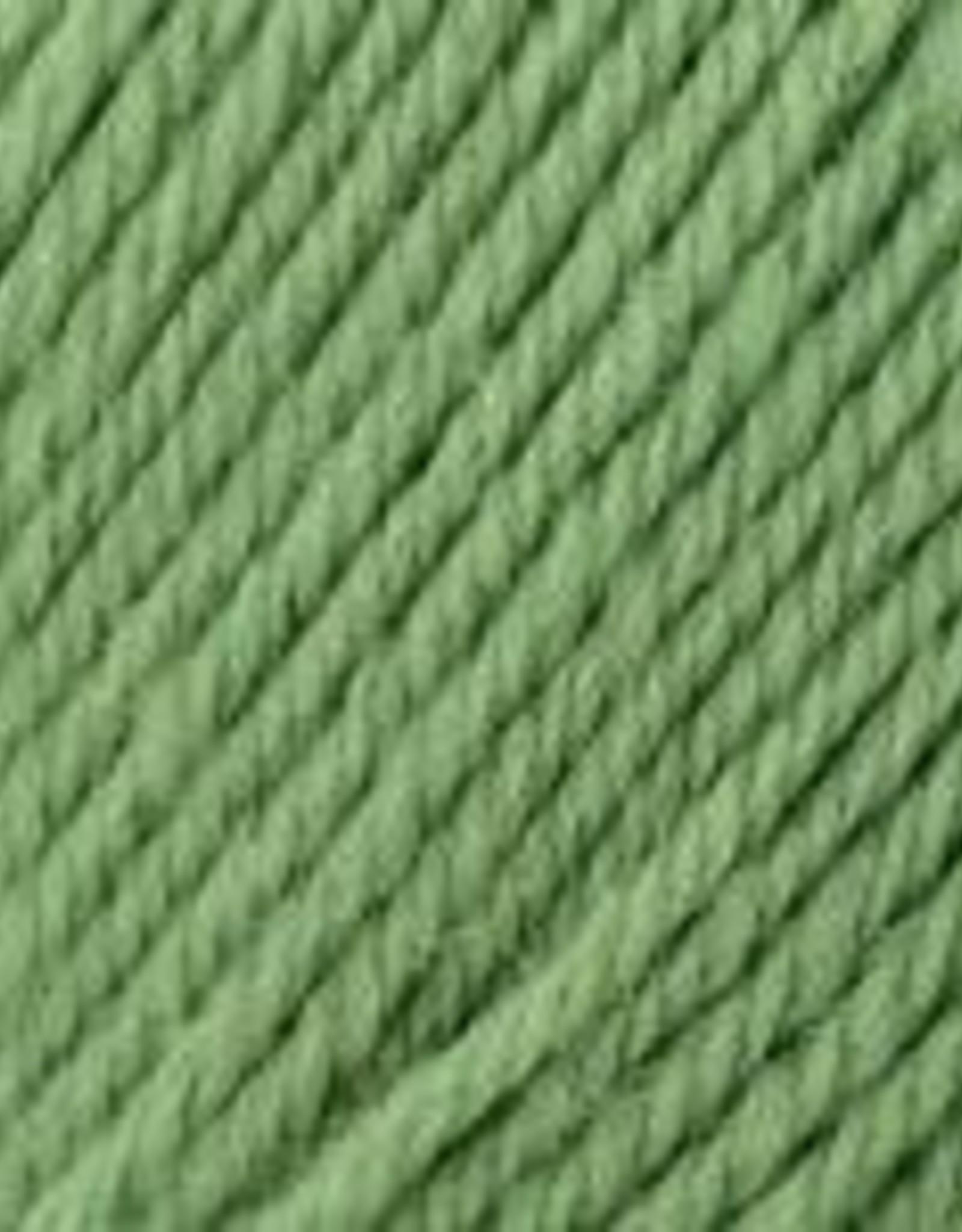 Universal Yarn Deluxe Worsted Superwash 710 Greenery