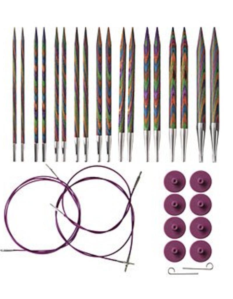 KnitPicks Ensemble aiguilles interchangeable Rainbow Wood 90306