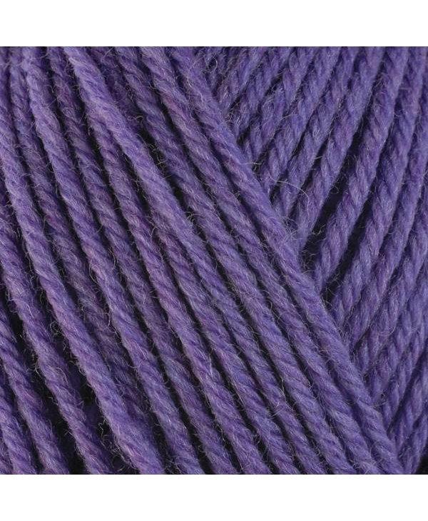 Color : 33146 violet