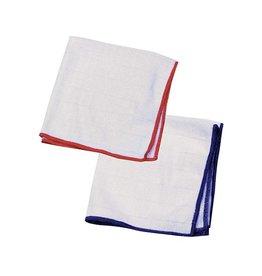 E-Cloth Wash and Wipe Dishcloths 2-Pack
