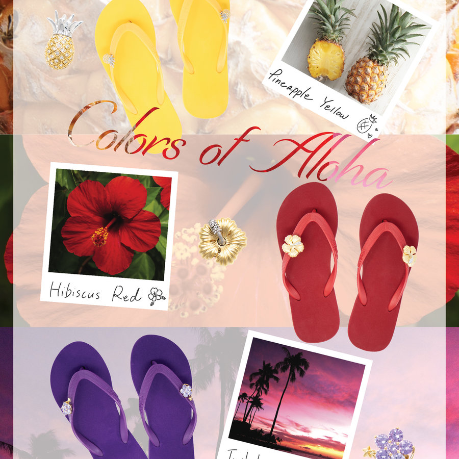 Colors of Aloha