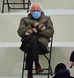The Yarn Stop Bernie's Mittens