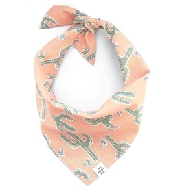 Cactus Garden Dog Bandana - Medium