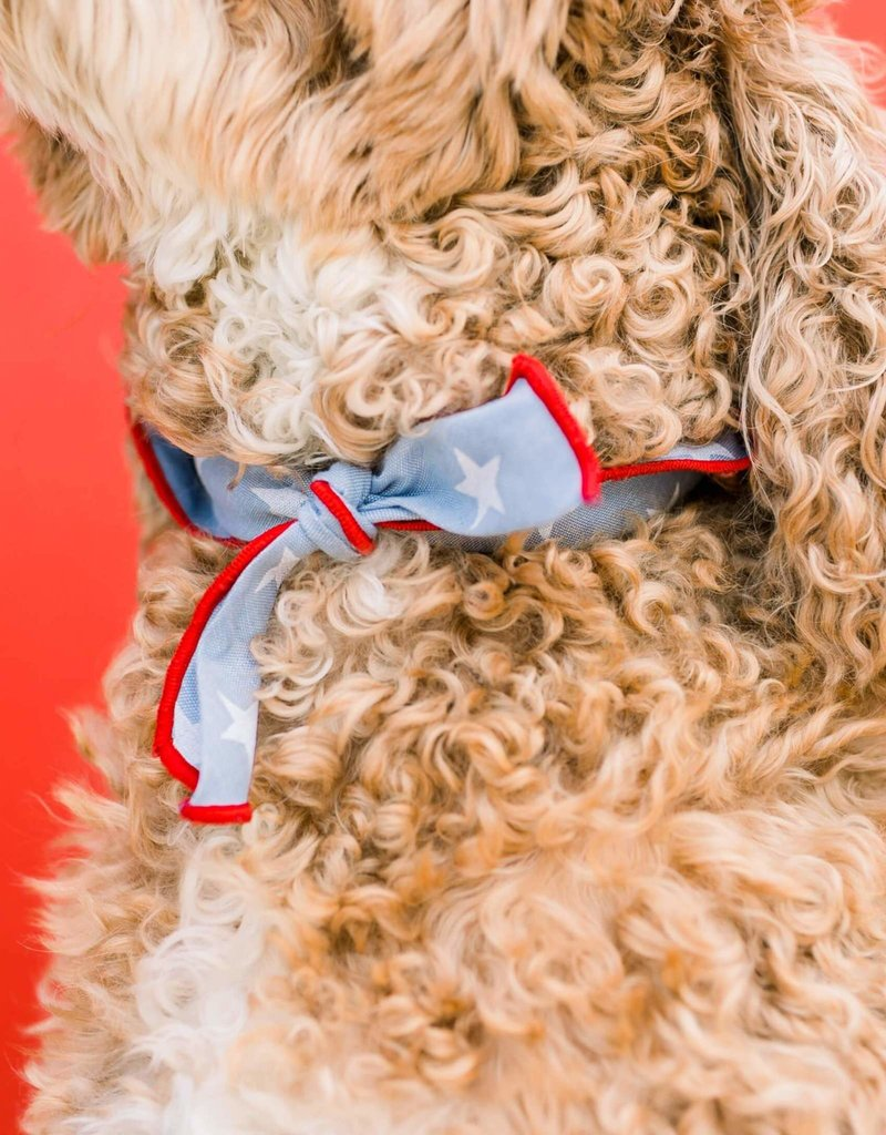 Liberty Dog Bandana - Small