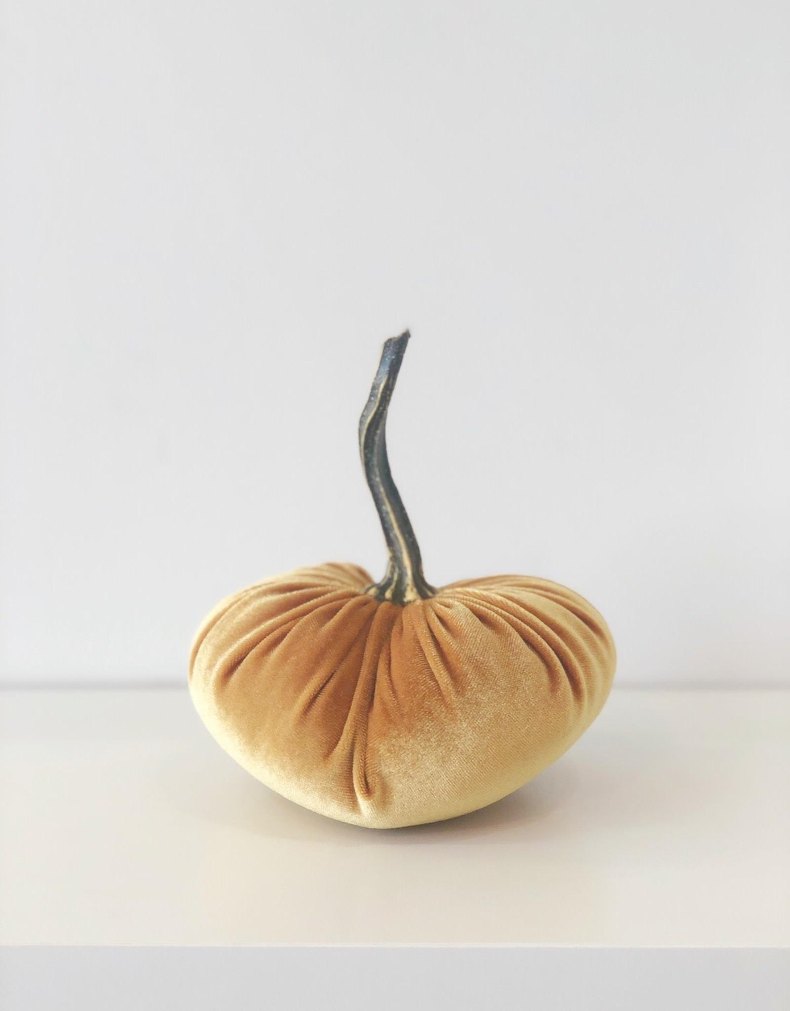 Small Velvet Pumpkin