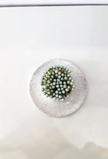 Ceramic Match Striker - White Speckled