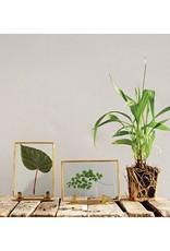 Brass & Glass Frame - Vertical