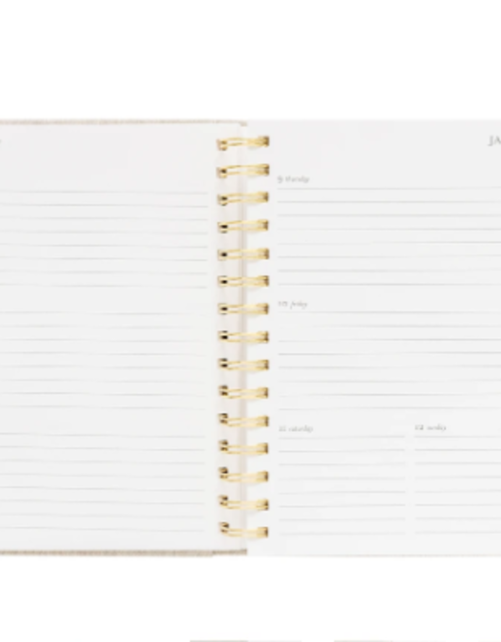 2020 Concealed Planner - Flax
