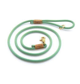 Spearmint Climbing Rope Dog Leash