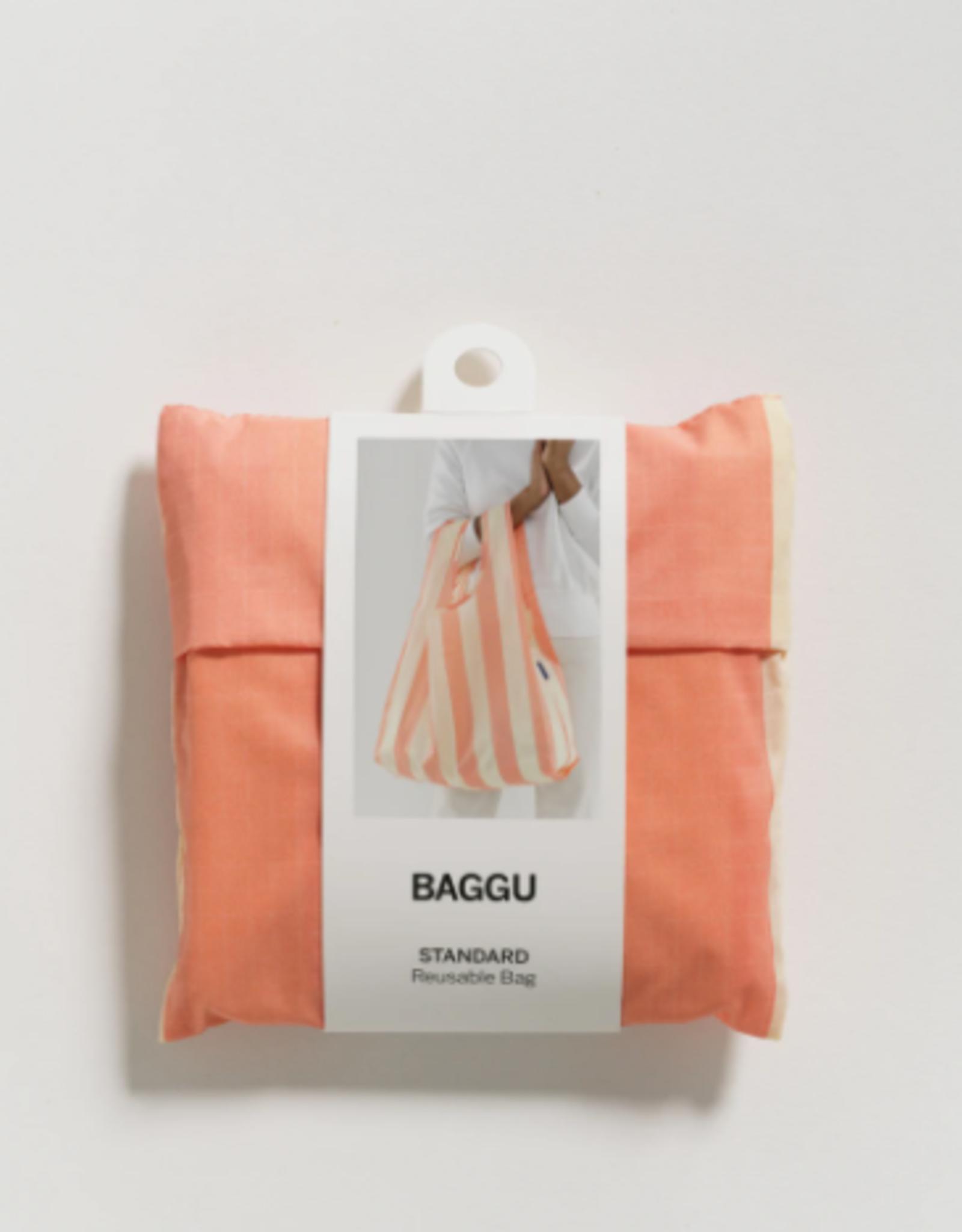 Standard Baggu - Washed Brick Stripe