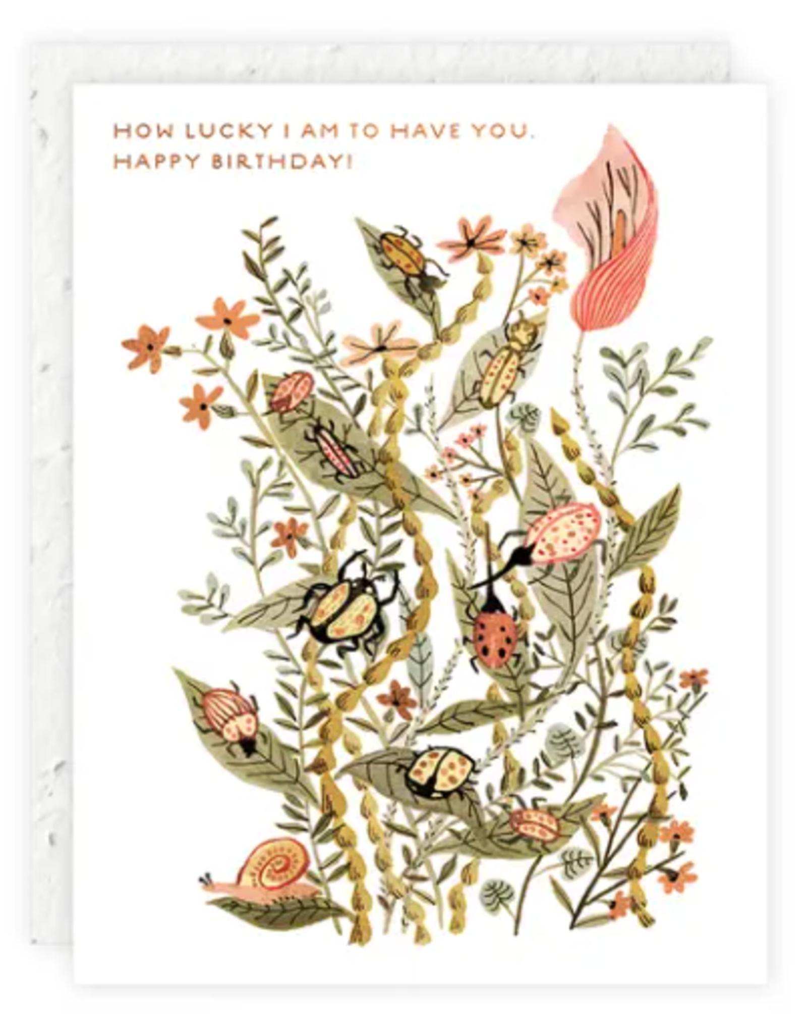 Lucky Beetles Birthday Card