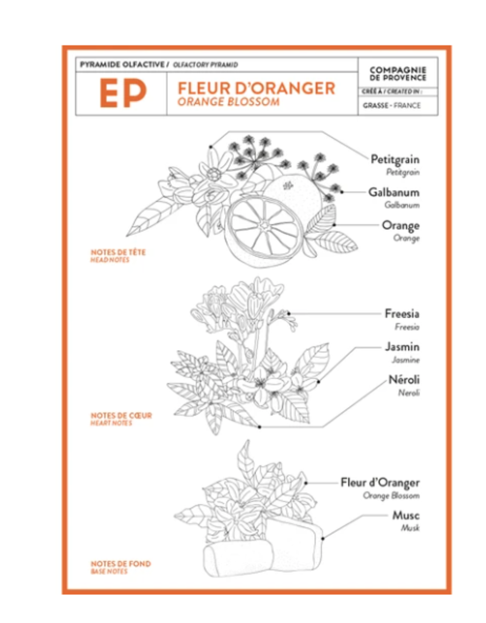 Liquid Soap Orange Blossom 16.9 fl oz