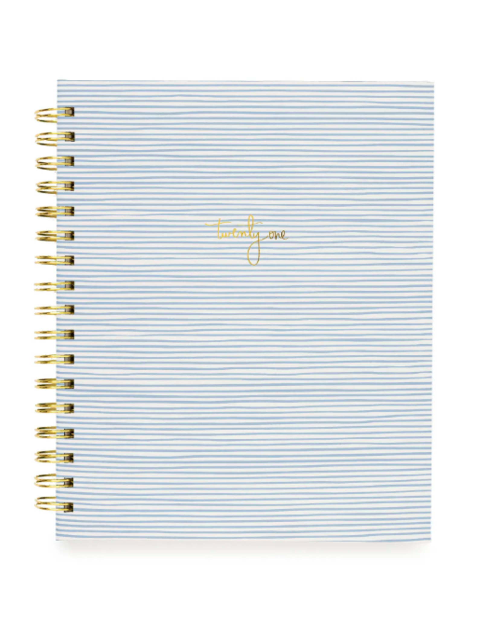 Blue Painted Stripe Signature Spiral Planner 2021