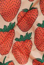 Standard Baggu - Strawberry