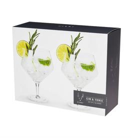 Raye Gin & Tonic Glasses