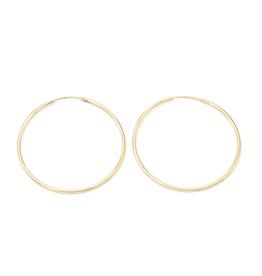 Large Gold Filled Hoops