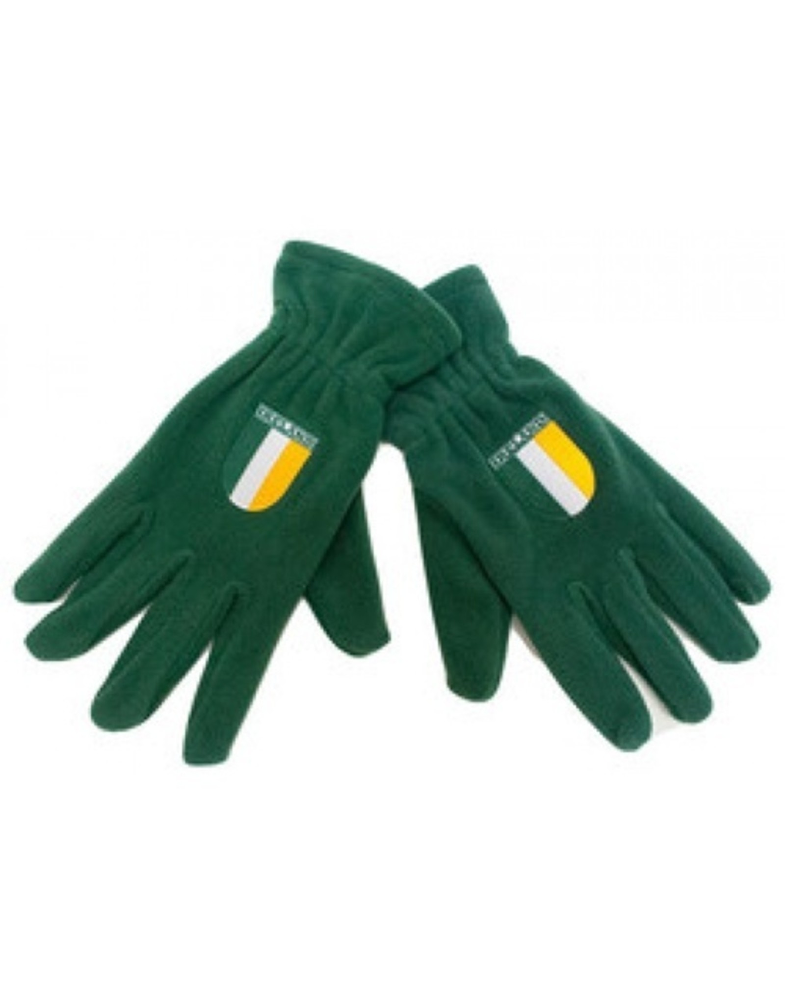 Donegal Bay Irish Gloves: Grn Fleece w/Flag