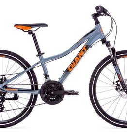 Giant XTC Jr 1 Disc 24 2019 Gray