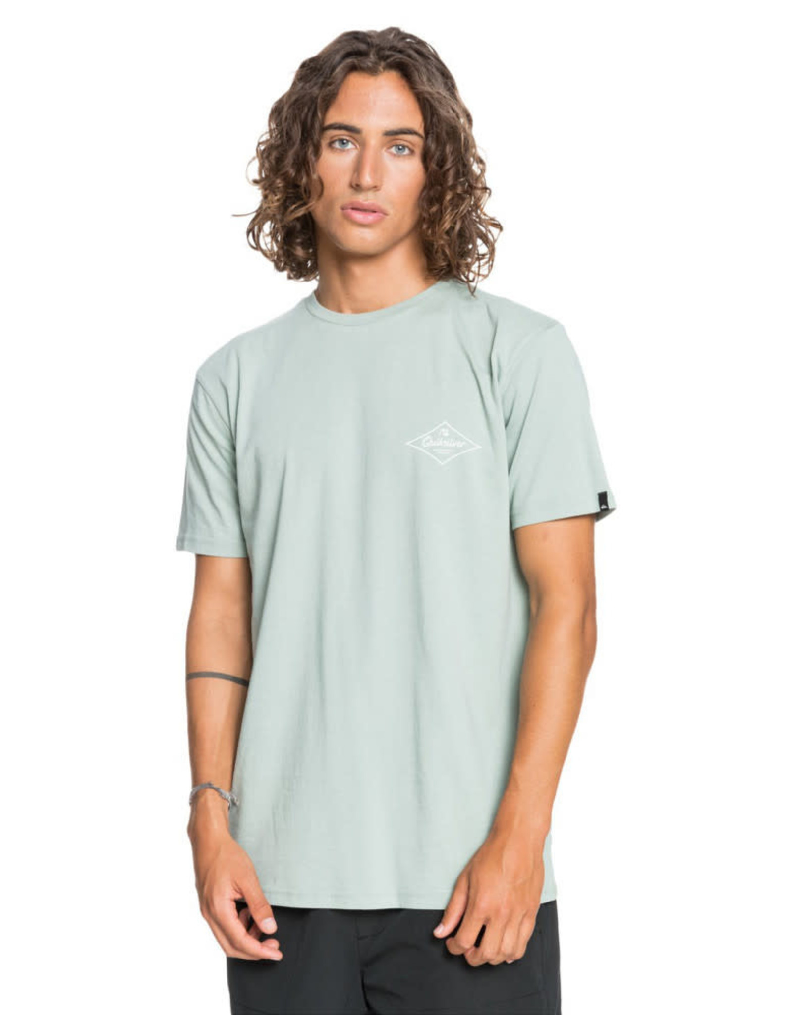 QUIKSILVER Ordinary Lives Tee