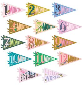 Milestone Pennants Little Artist