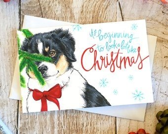 Any Adventure Designs Any Adventure Designs- Holiday Greeting Cards