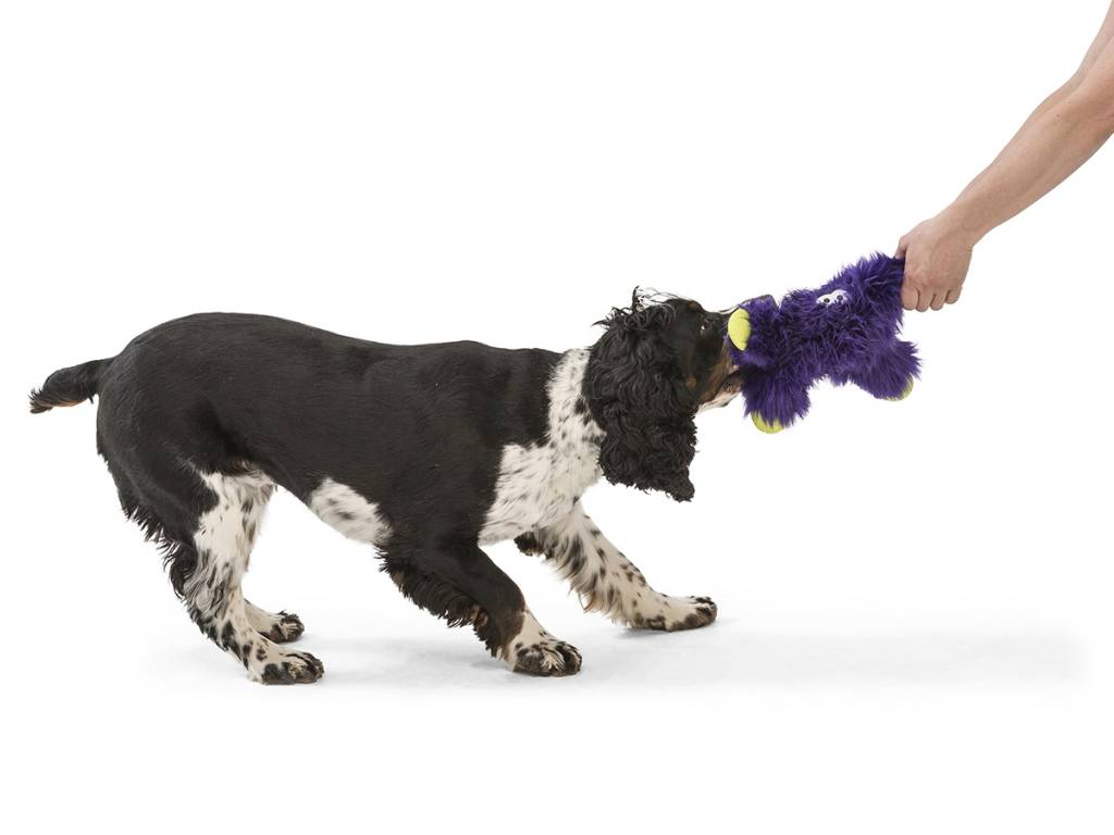 """West Paw Designs West Paw-Rowdies Durable Plush Dog Toy  """"Lincoln"""""""