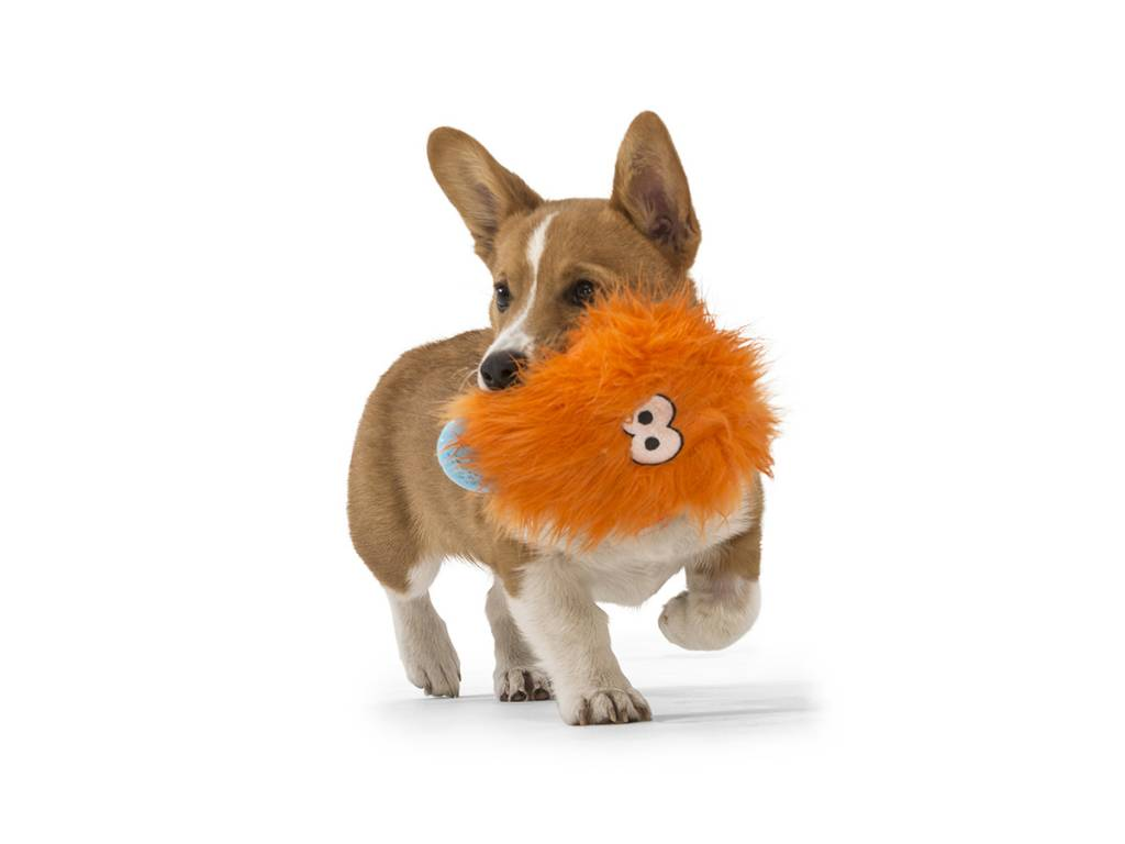 "West Paw Designs West Paw-Rowdies Durable Plush Dog Toy  ""Rosebud"" (disc.)"