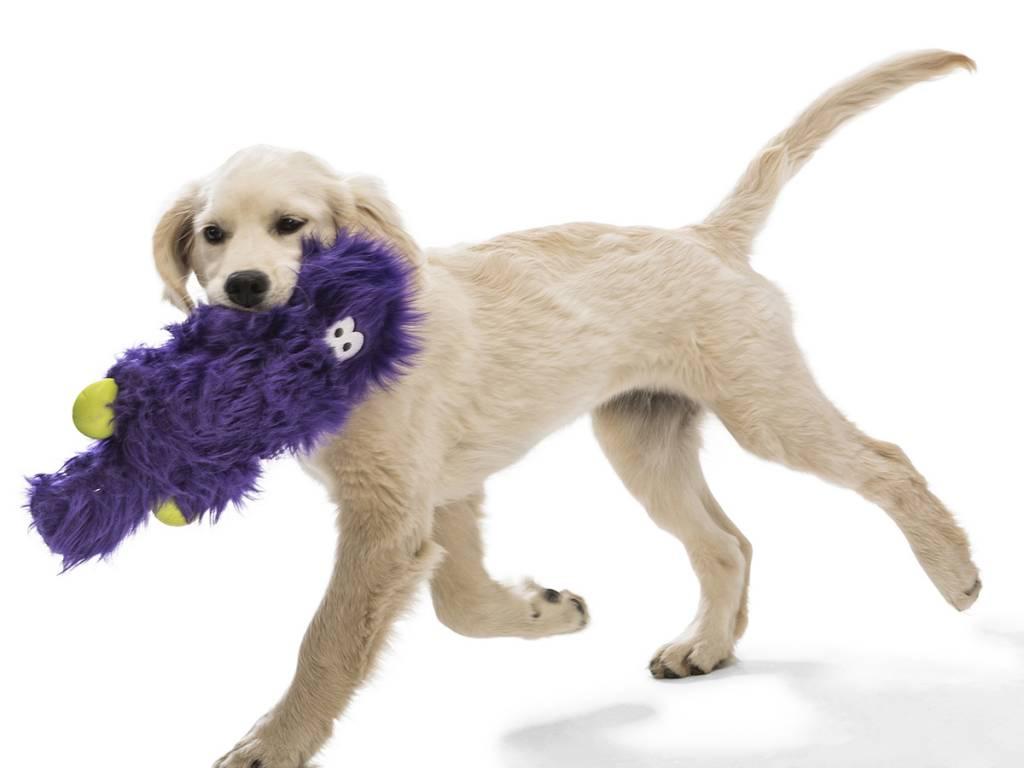 "West Paw Designs West Paw-Rowdies Durable Plush Dog Toy  ""Sanders"" (disc.)"