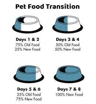 Koha Super Premium Pet Food Koha Cat Food 90% Single Protein - Kangaroo Pate 5.5oz