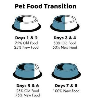 Koha Super Premium Pet Food Koha Cat Food-Duck Stew 5.5oz