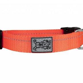 RC Pet-Primary Clip Collar