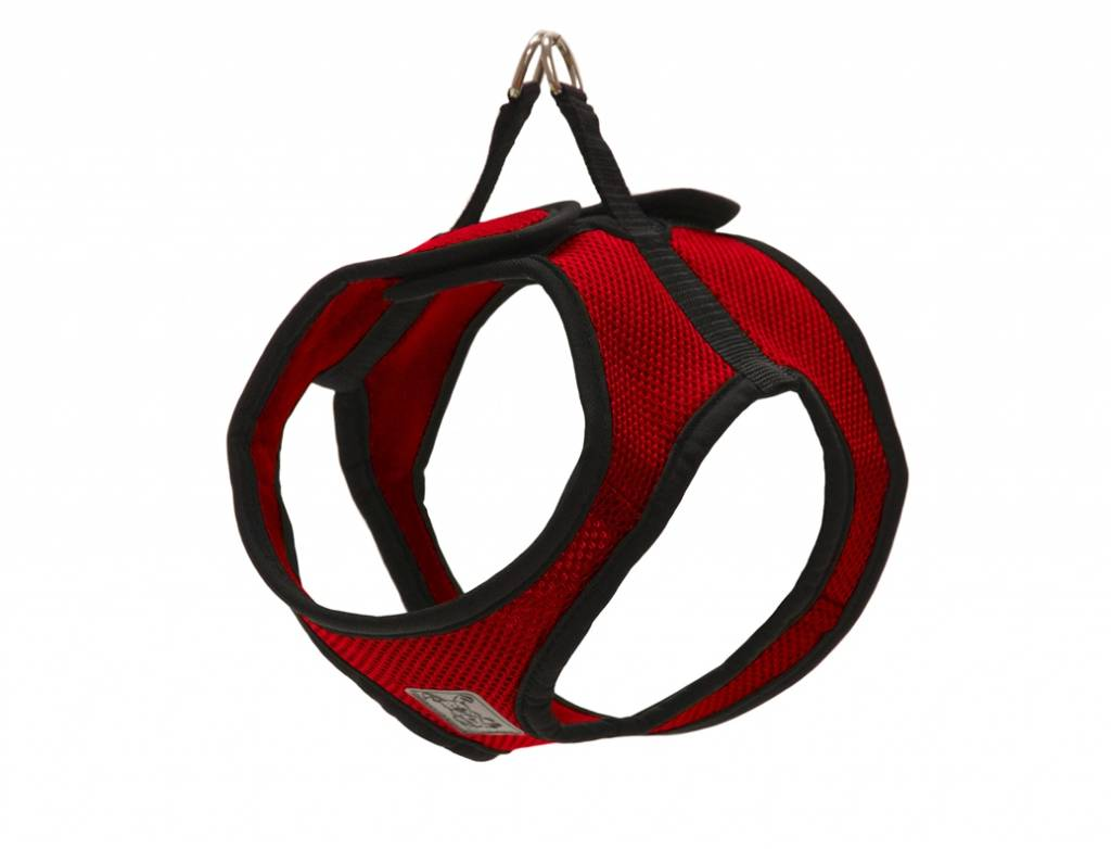 RC Pets RC Pet-Step in Cirque Harness
