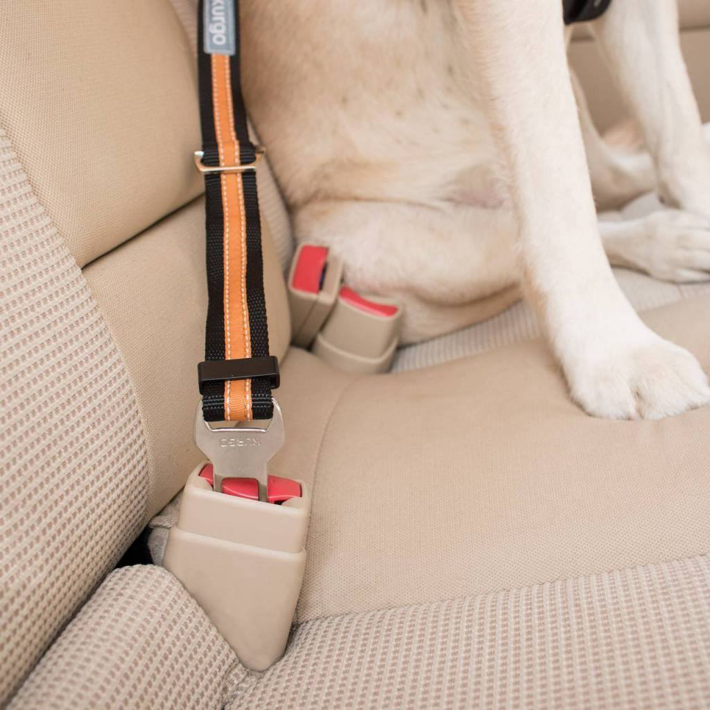 Kurgo Kurgo - Direct to Seatbelt Tether Black/Orange