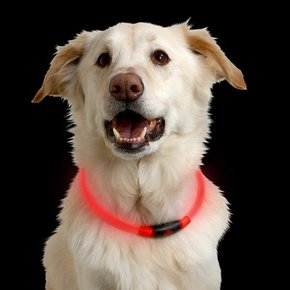 Nite Ize Nite Ize- Nitehowl Safety Necklace