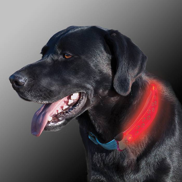 Nite Ize Nite Ize- Nite Dawg LED Collar Cover